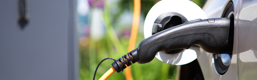 Alternatively fuelled vehicles achieve record market share
