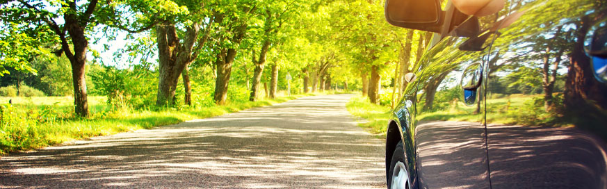 Why company cars are good for the environment